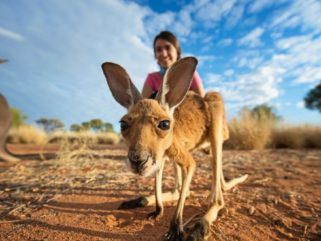 A Day Spent in Alice Springs - northernterritory.com.au - Globetrotting horse riding holidays
