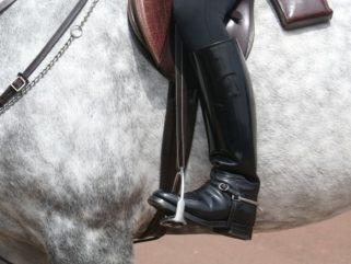 Half Chaps Versus Long Boots - Globetrotting horse riding holidays