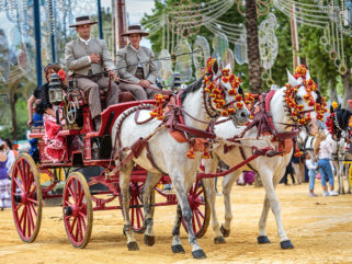 Jerez Horse Festival - Jim Monk Photography - Globetrotting horse riding holidays
