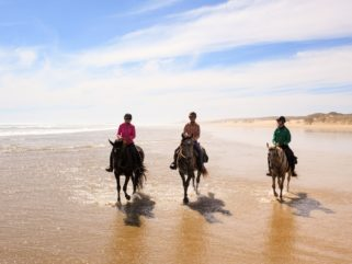 riders on beach in new zealand horse riding holiday by globetrotting