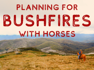 Planning for Bushfires with Horses - Globetrotting horse riding holidays