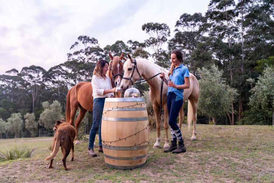 wine tasting with horses horse riding holiday near sydney by globetrotting