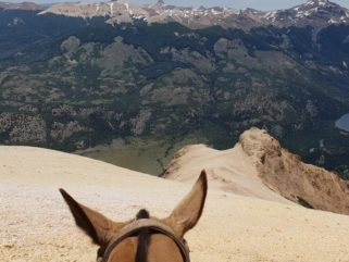 Feedback on The Patagonia Trail, Argentina - Globetrotting horse riding holidays