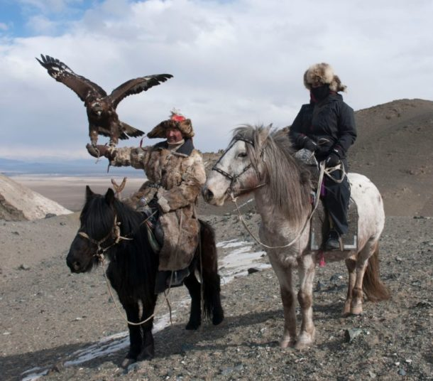 Horse Breed: Kazakh - photo via Tribes.World - Globetrotting horse riding holidays