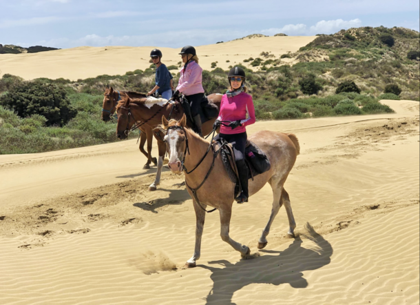 The Twin Coast Adventure, Bay of Islands, New Zealand - Globetrotting horse riding holidays