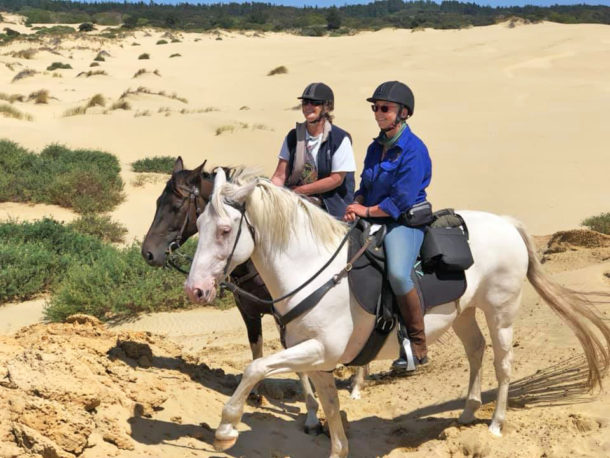 The Twin Coast Adventure, North Island, New Zealand - Globetrotting horse riding holidays