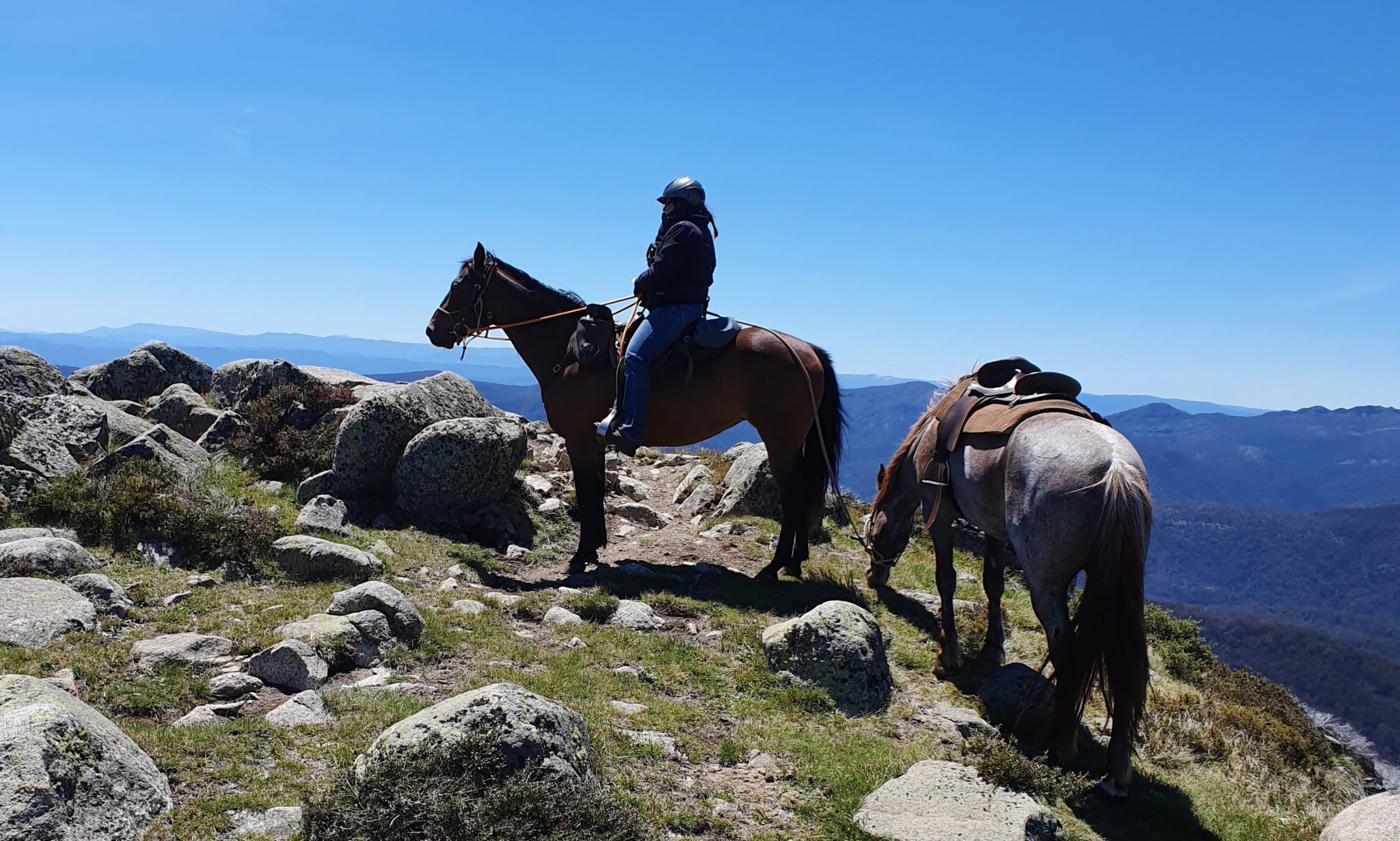 Craig's Hut & High Country Ride, Australia - Globetrotting horse riding holidays