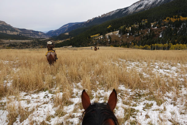 Big Horn Cattle Drive, USA - Globetrotting horse riding holidays