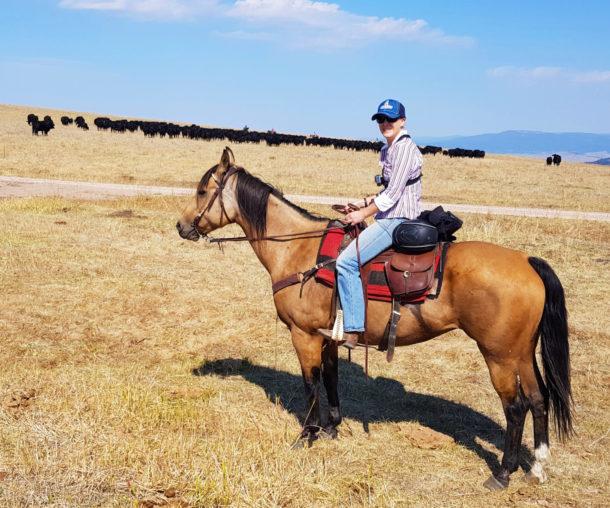 Montana, USA - Globetrotting horse riding holidays