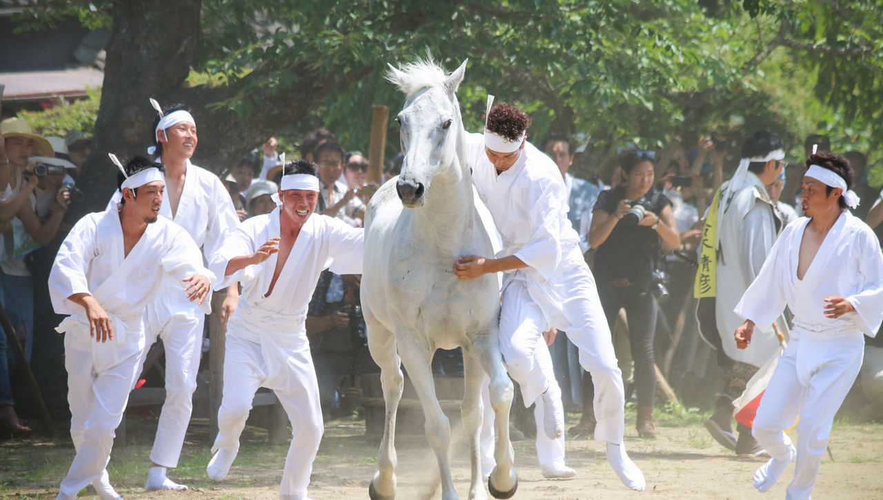 Soma Nomaoi festival, Japan - image via Sōma Nomaoi Executive Committee - Globetrotting horse riding holidays