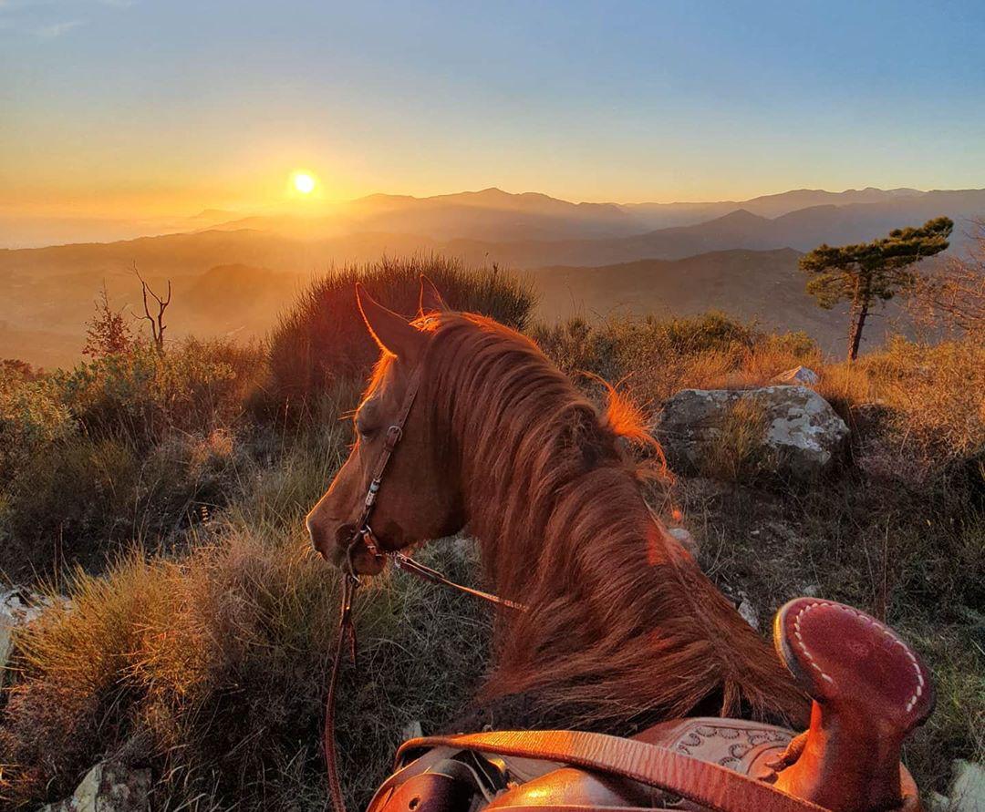 Stay Wild and Free: Selina and Vispo - Globetrotting horse riding holidays - image via @selina_and_vispo