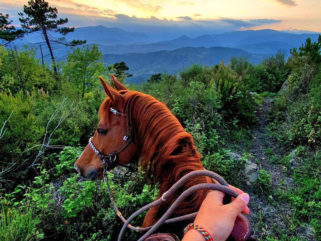 Stay Wild and Free: Selina and Vispo - Globetrotting horse riding holidays - image via @selina_and_vispo