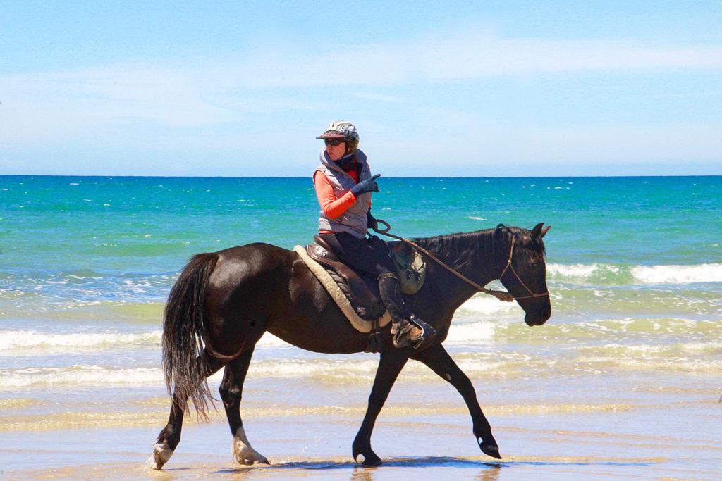 Tassie Tiger Trail, Tasmania, Australia - Globetrotting horse riding holidays