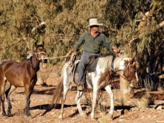 Meet our Guide: Brian Hampson - image via Outback Magazine - Desert Brumby Safari, Australia - Globetrotting horse riding holidays