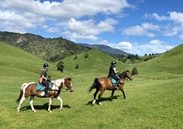The River Valley Experience, North Island, New Zealand - Globetrotting horse riding holidays
