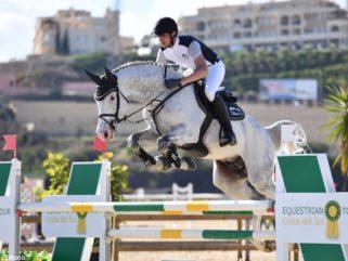 Horse Breed: Holsteiner - image via Gornall Equestrian - Globetrotting horse riding holidays