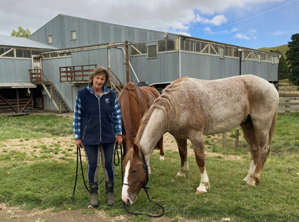 River Valley Ride, North Island, New Zealand - Globetrotting horse riding holidays