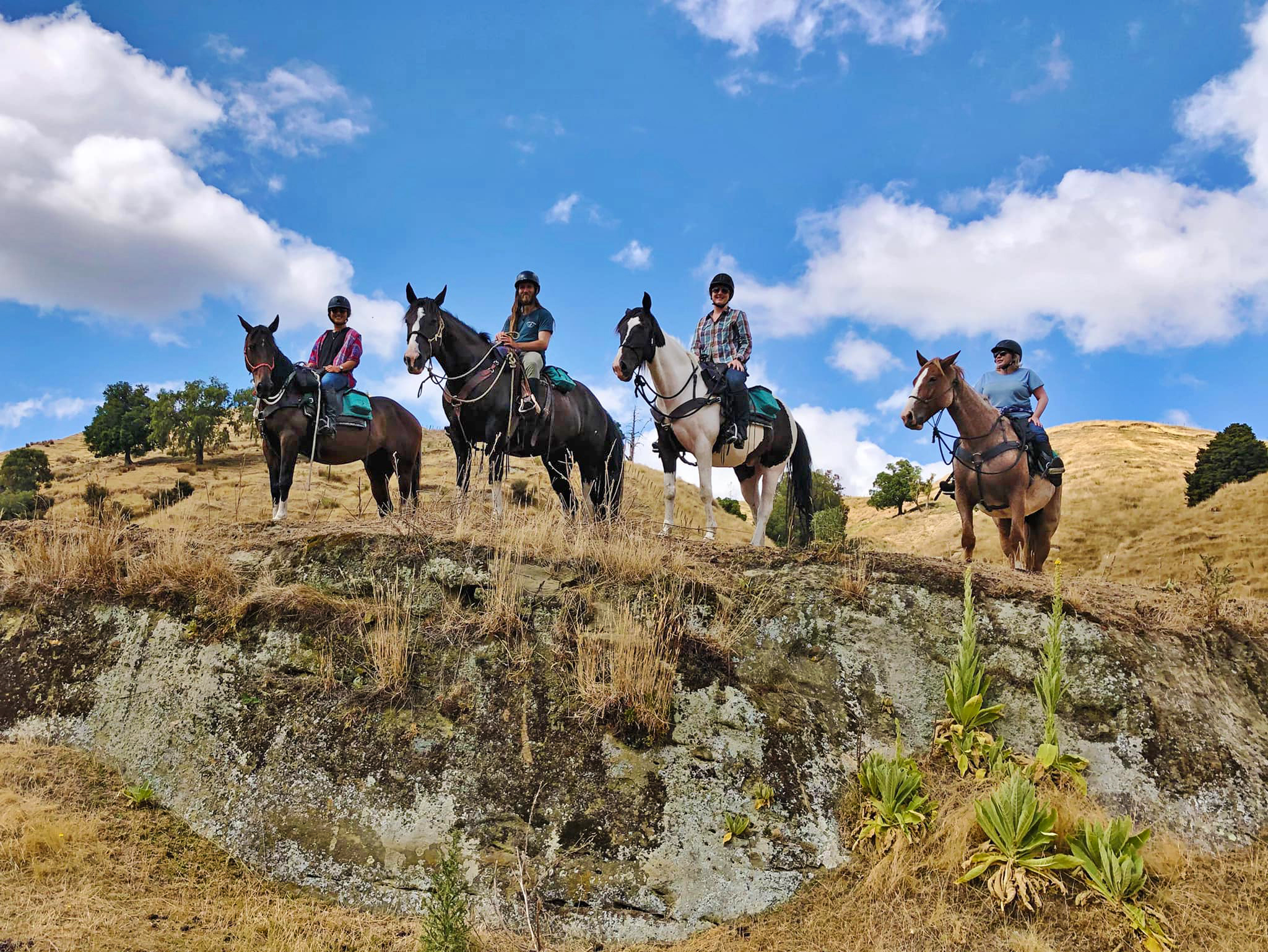 The River Valley Ride, North Island, New Zealand - Globetrotting horse riding holidays