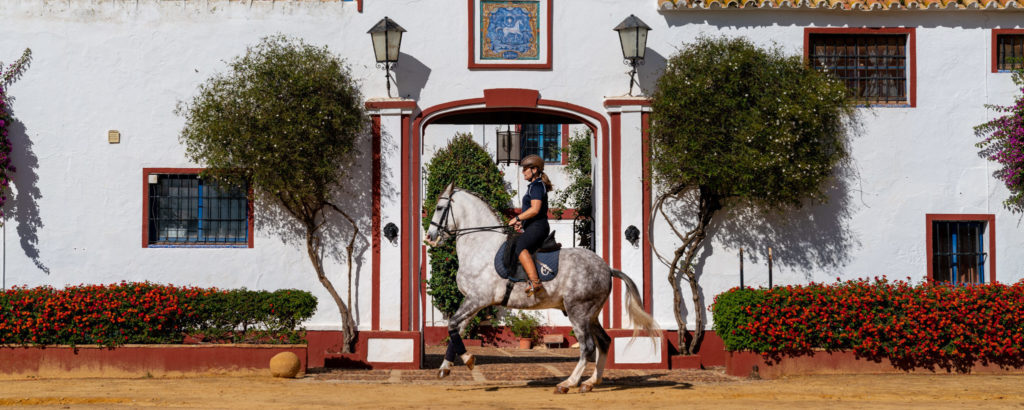 Dressage in Andalusia, Spain - Globetrotting horse riding holidays