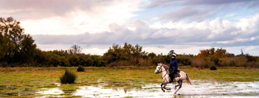 Camargue Ride, France - Globetrotting horse riding holidays