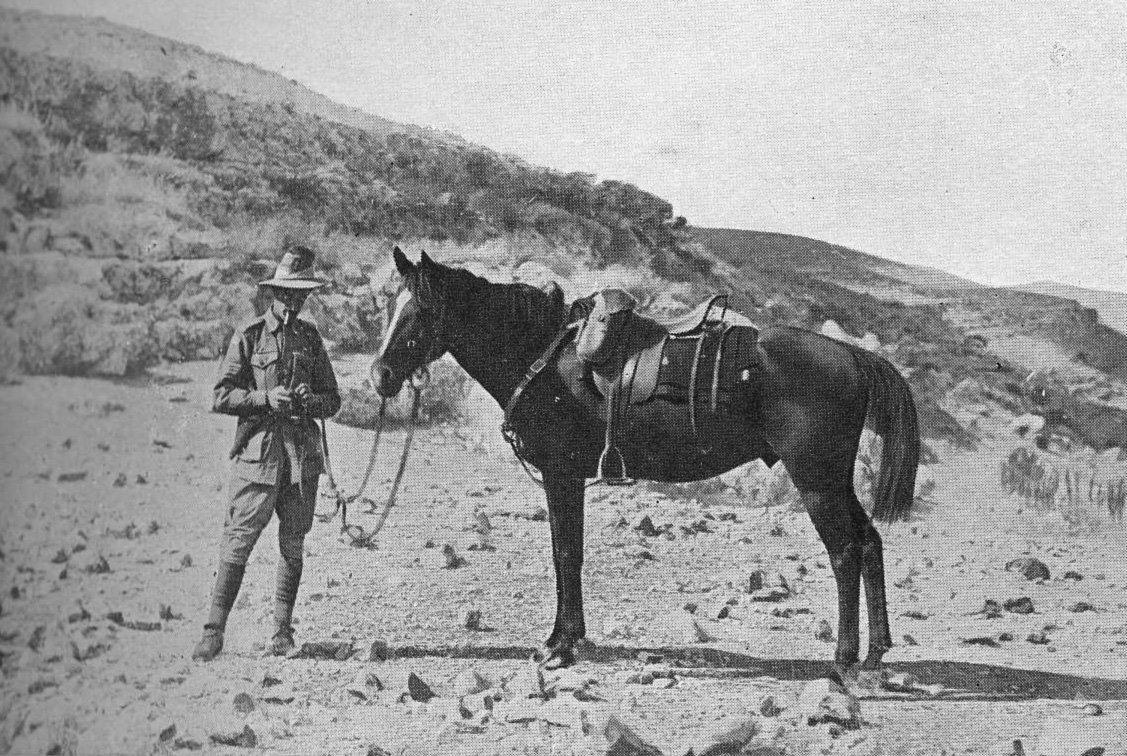 Bill the Bastard - image via the Australian War Memorial - Globetrotting horse riding holidays