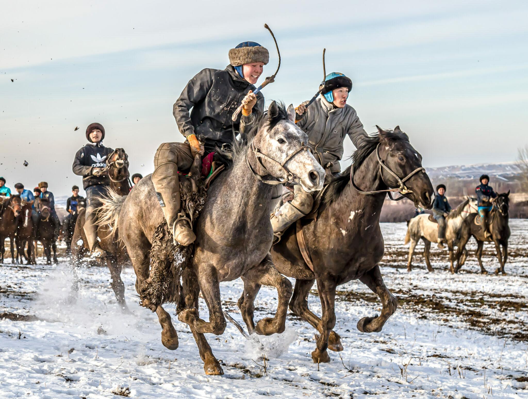 Horse Breed: Kazakh - image by Vladimir Konstantinov/Shutterstock.com - Globetrotting horse riding holidays