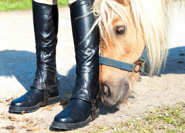 Half Chaps vs Long Boots - photo by AnnaElizabeth photography/Shutterstock.com - Globetrotting horse riding holidays