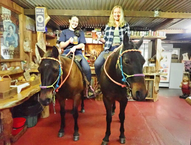 The Rainbow Beach, Bush & Cattle Ride, Queensland, Australia - Globetrotting horse riding holidays