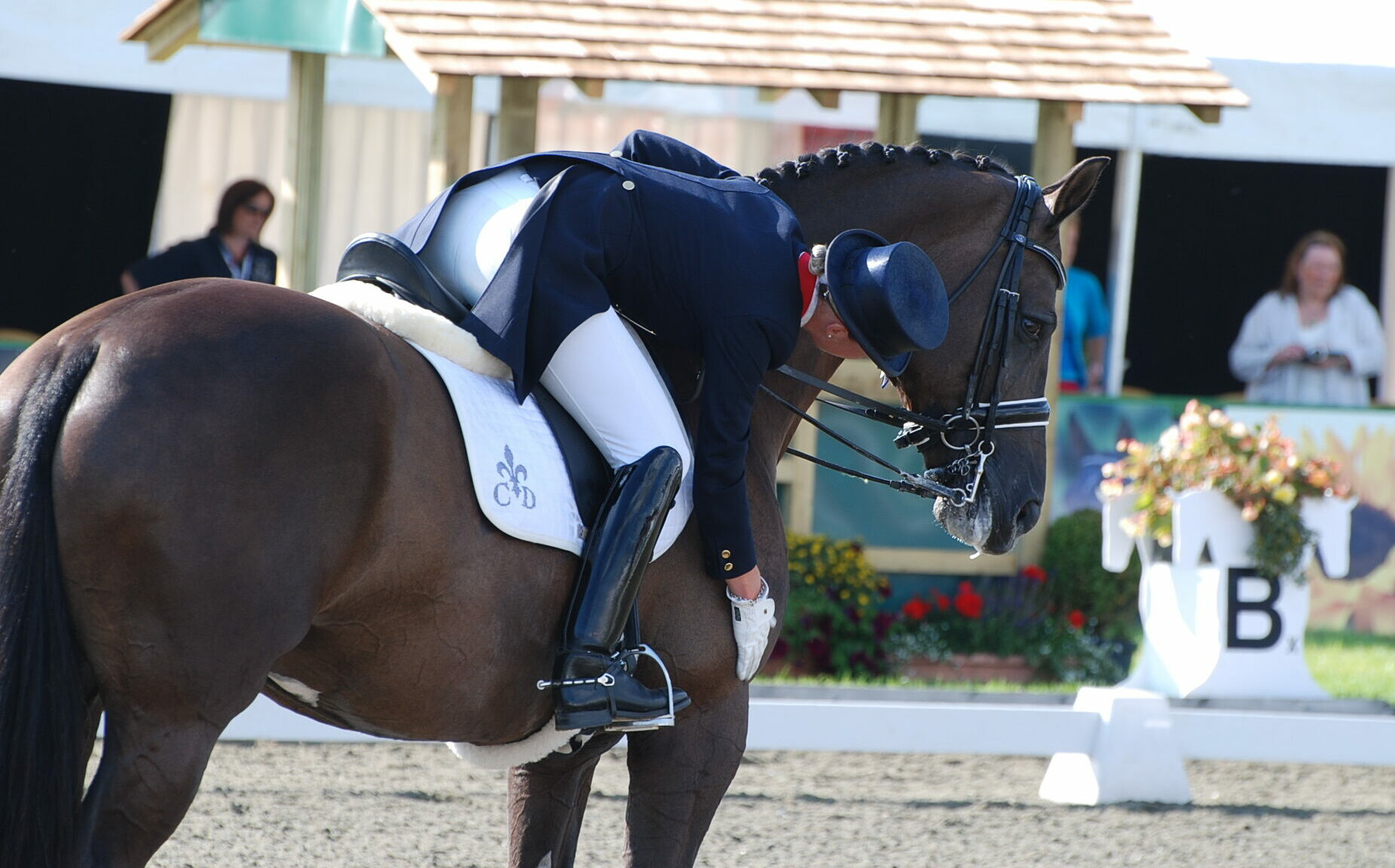 Charlotte Dujardin and Valegro - image by Judy Sharrock on Flickr (CC BY-ND 2.0) - Globetrotting horse riding holidays