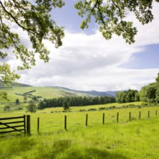 horse riding holiday in the Scottish Borders, Scotland