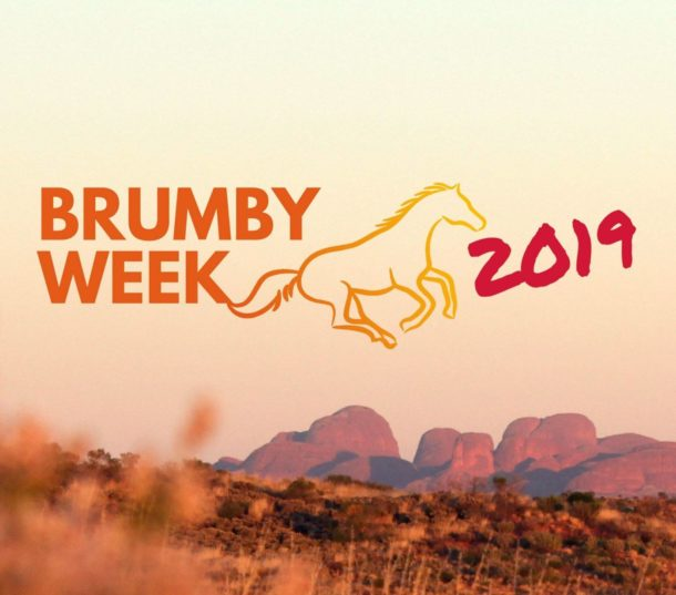 Brumby Week - Globetrotting horse riding holidays