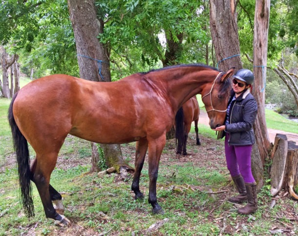 Craig's Hut & High Country Ride - Globetrotting horse riding holidays