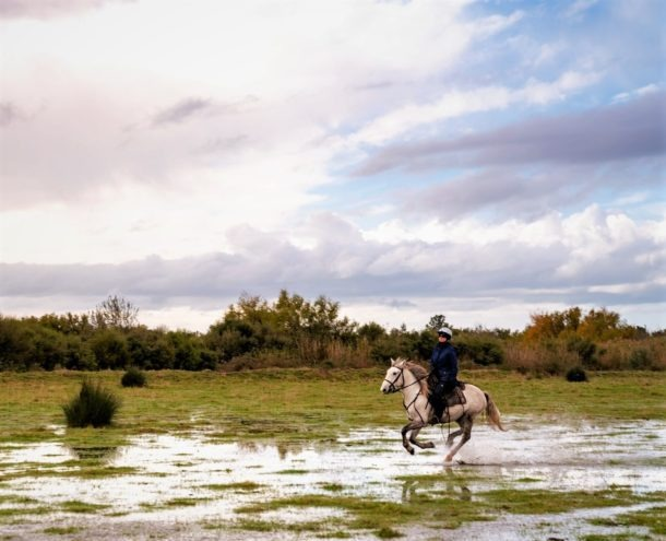 Globetrotting horse riding holiday in The Camargue, France
