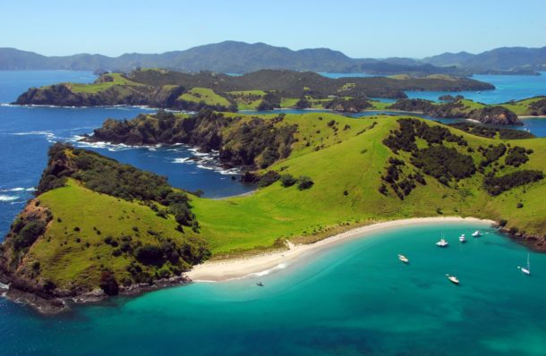 A Day Spent in Paihia - Base Backpackers Paihia - Globetrotting horse riding holidays