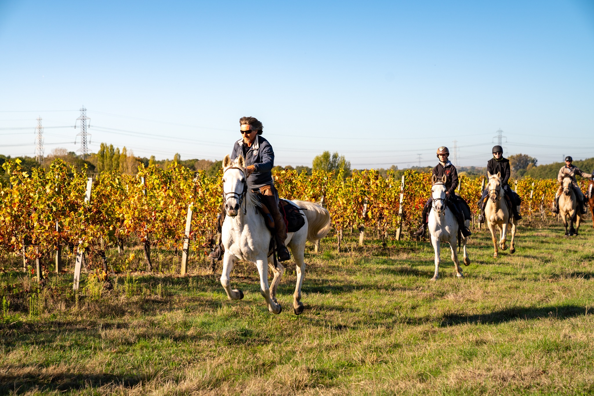 horse riding holiday in Bordeaux, France