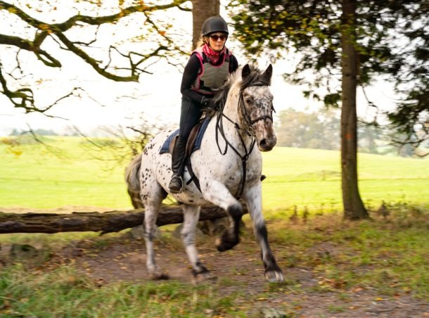 Globetrotting Castle & Estate Ride, Ireland - horse riding holidays