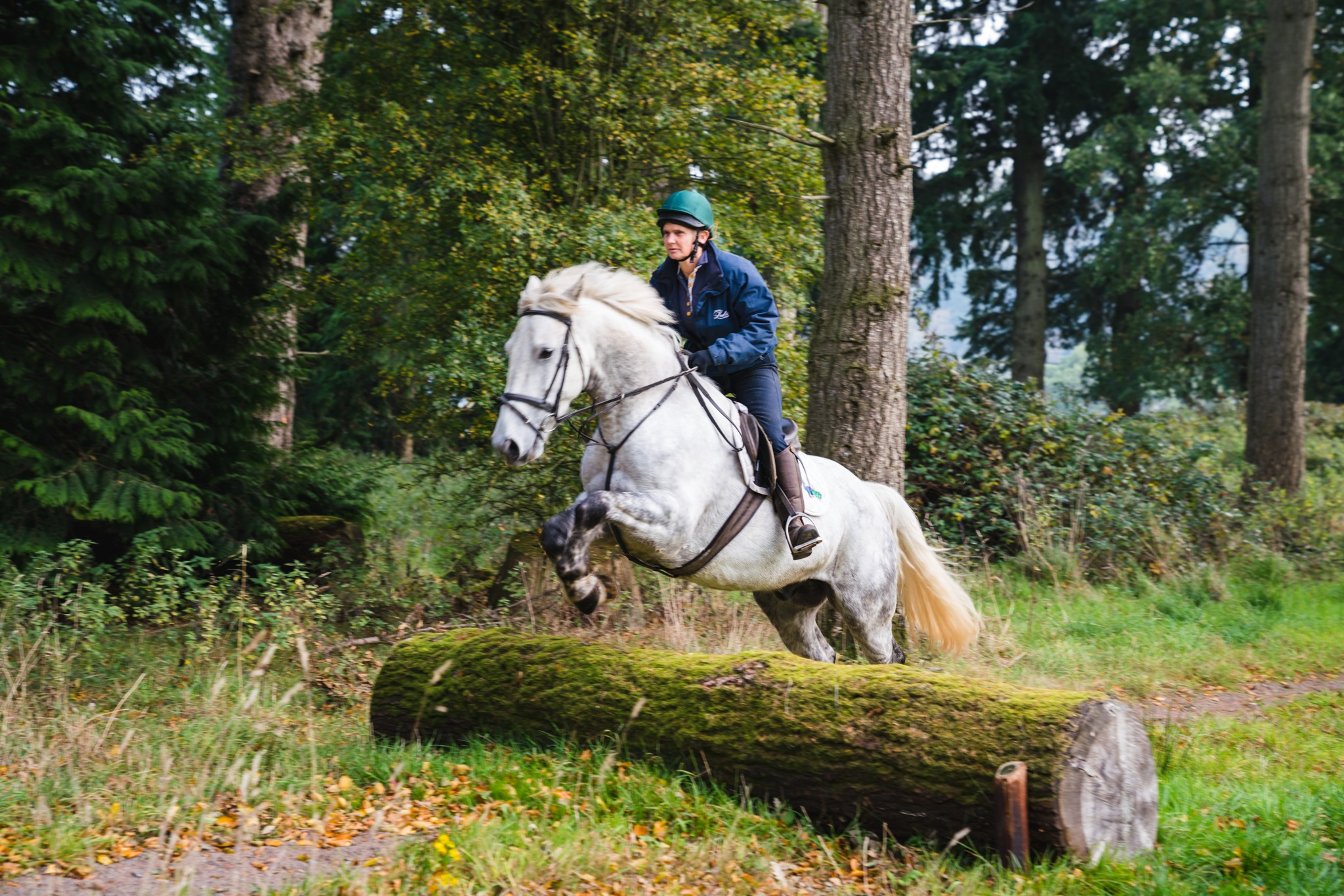 rider cross country jumping on horse riding holiday in Ireland by globetrotting