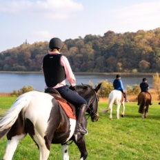 Castle and Estate horse riding holiday in Ireland