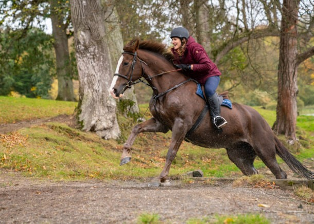 Globetrotting Castle & Estate Ride, Ireland - horse riding holiday