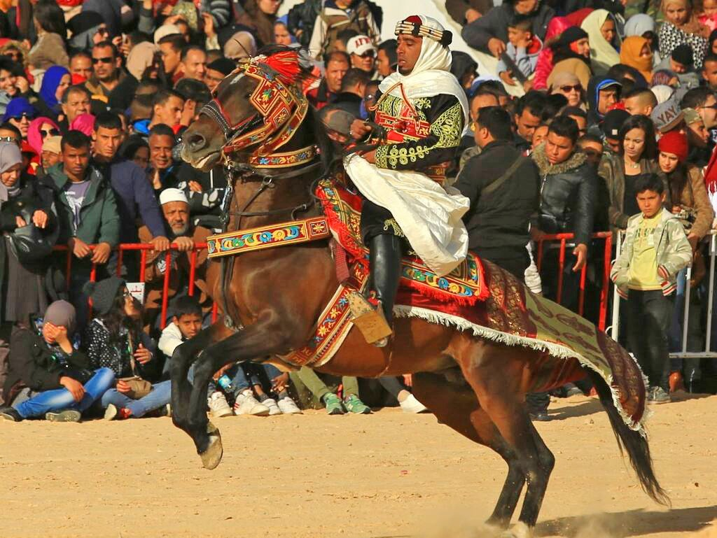 International Festival of the Sahara - Jakub Kyncl - Globetrotting horse riding holidays