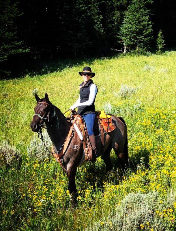 Big Horn Cattle Drive - Globetrotting horse riding holidays