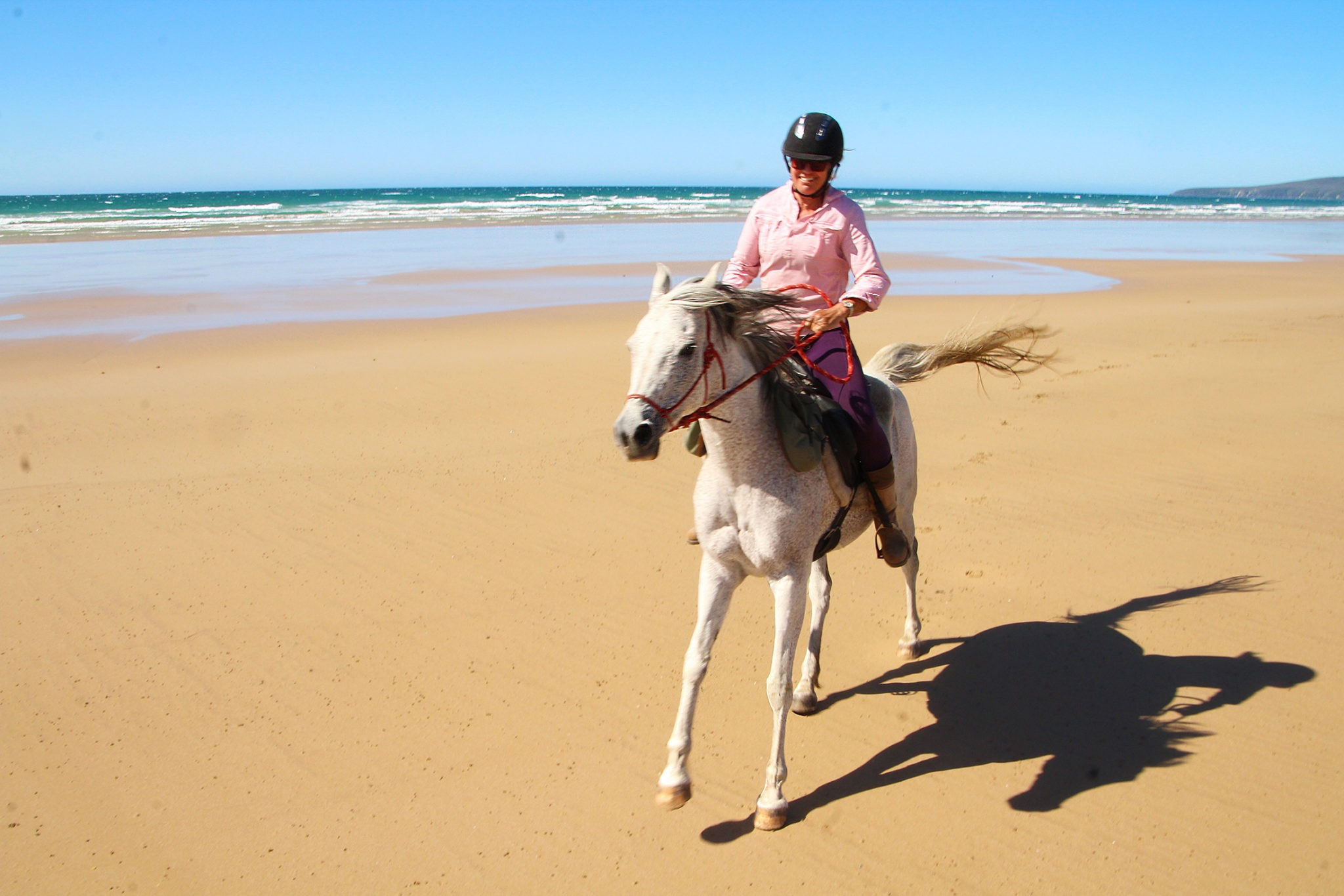 Tassie Tiger Trail - Globetrotting horse riding holidays