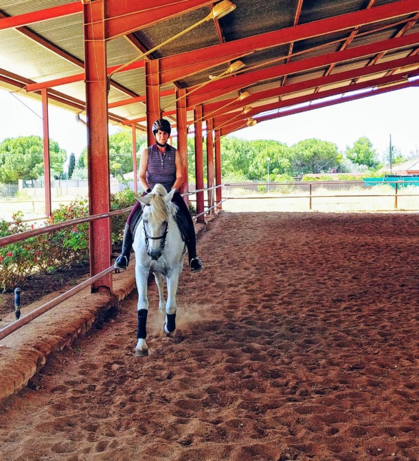 Dressage Ride in Spain - Globetrotting horse riding holidays