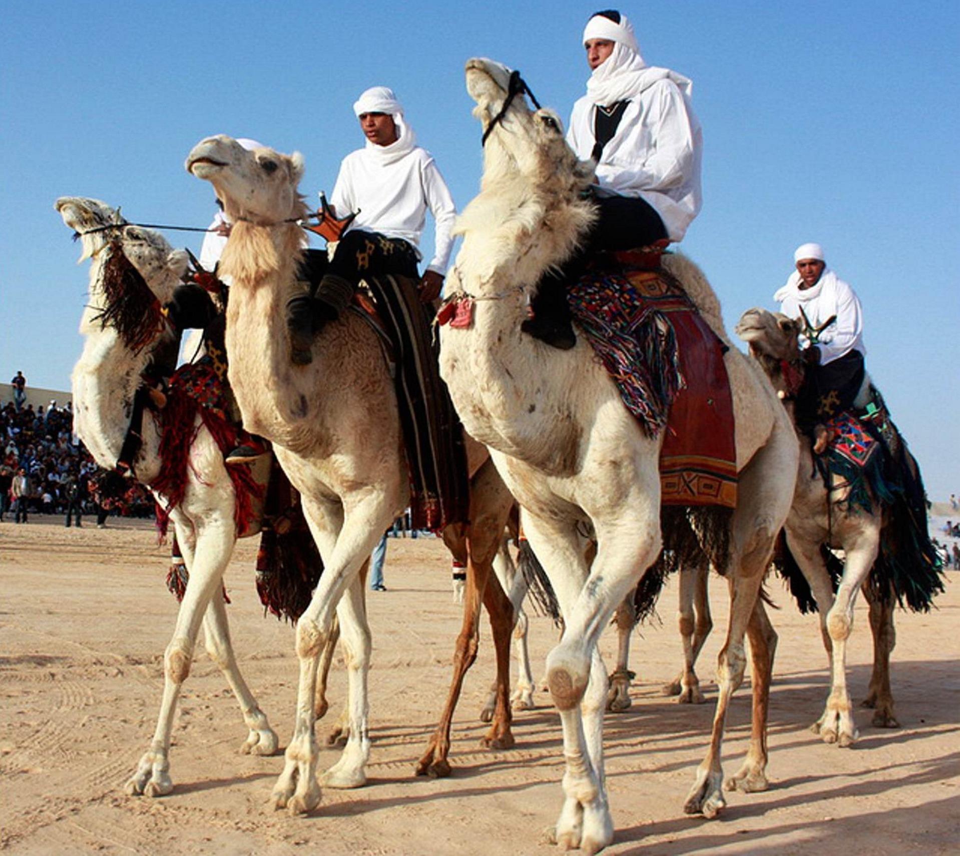 International Festival of the Sahara - hammamet guide - Globetrotting horse riding holidays