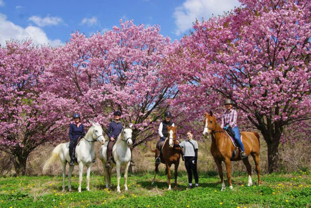 Kobuchizawa, Japan - Globetrotting horse riding holidays