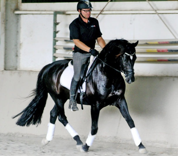 Nathan Harvey, Para Equestrian - Globetrotting horse riding holidays