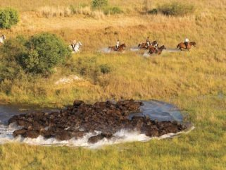 riders witnessing hippos crossing river on botswana horse riding safari by globetrotting