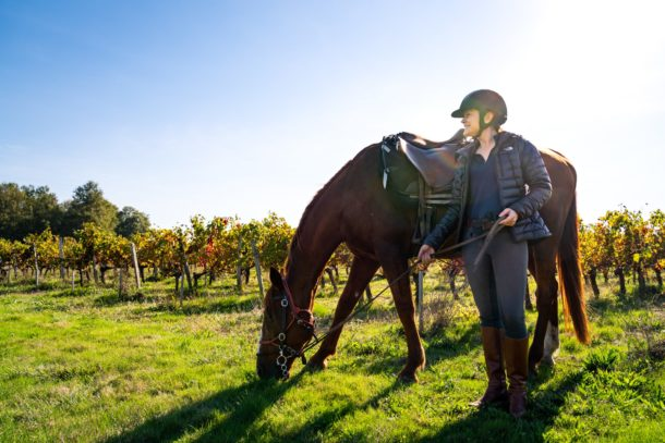 horse and rider resting in vineyard bordeaux horse riding holiday by globetrotting