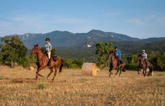 horse riding holiday Catalonia