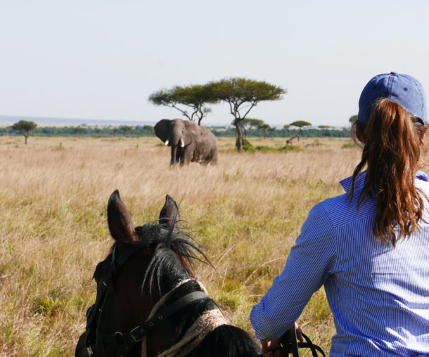horse riding safari in the Maasai Mara, Kenya